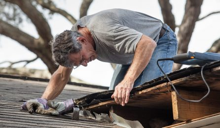 Close,Up,View,Of,Man,Using,Removing,Rotten,Wood,From